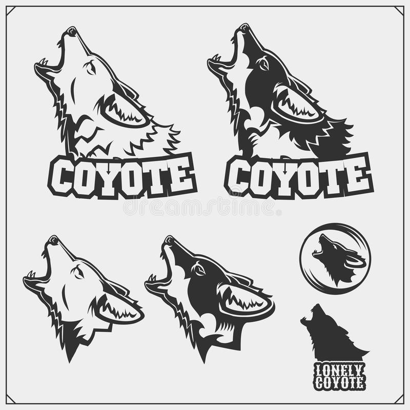 The emblems with coyote for a sport team. Vector royalty free illustration