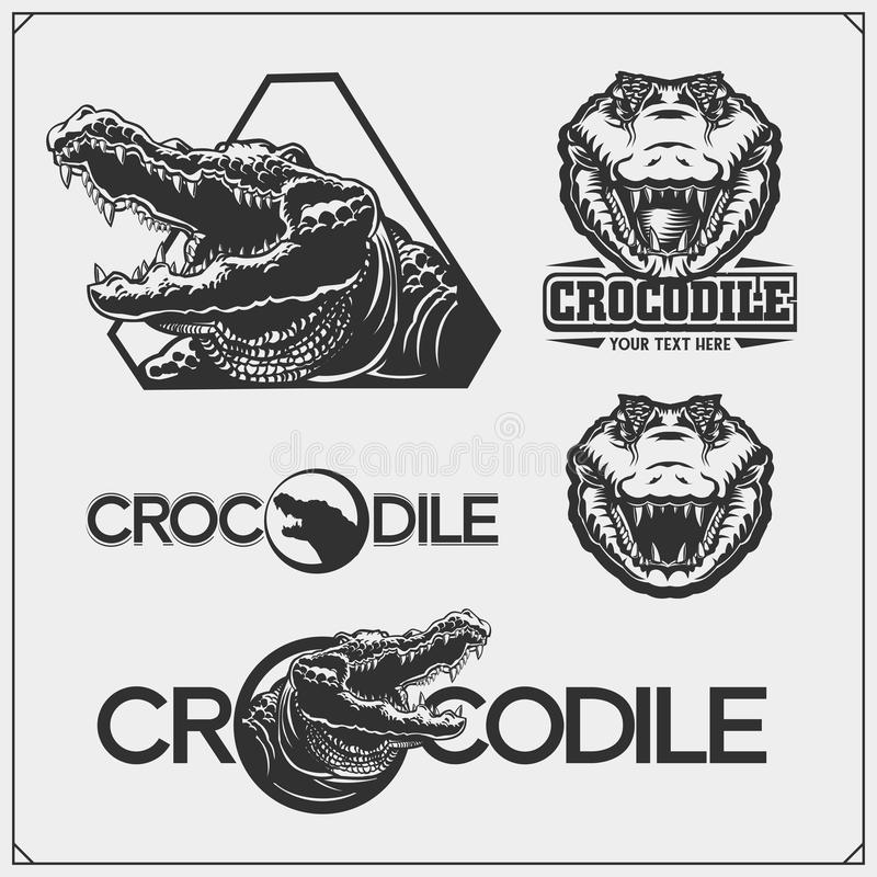 The emblems with crocodile for a sport team. Crocodile labels, badges and design elements. Vector vector illustration