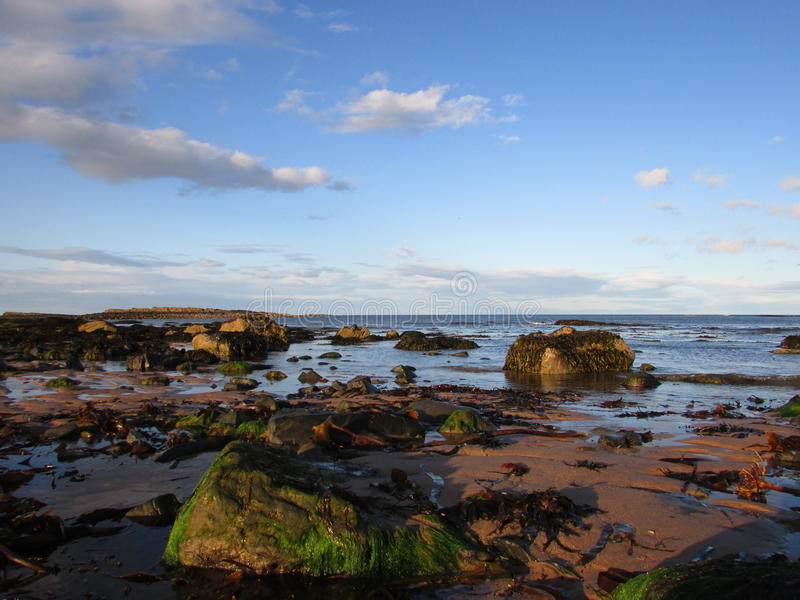 Embleton海岸线 免版税库存图片