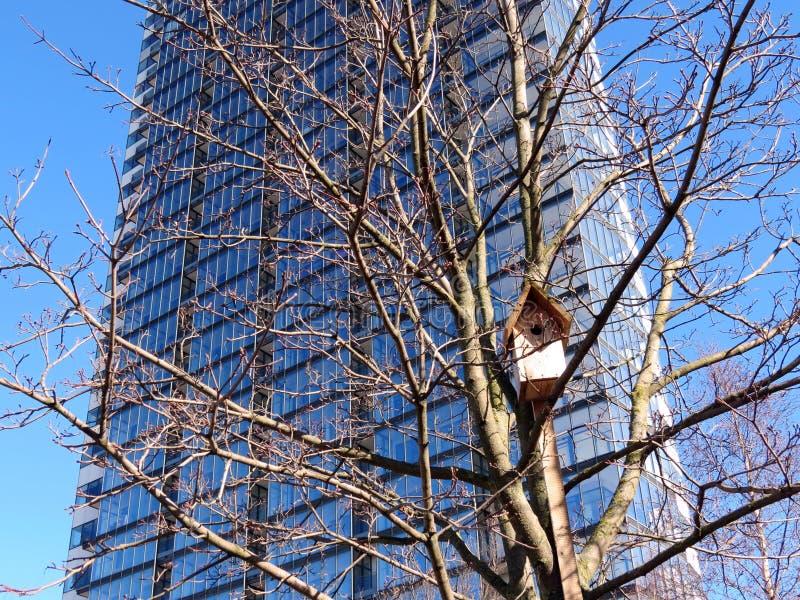 Emboîtement-boîte et maison d'oiseau image libre de droits