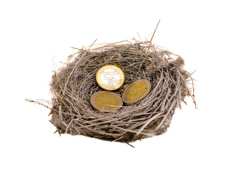 Emboîtement d'oiseau et argent argentés de pièces de monnaie d'euro sur le blanc photo libre de droits