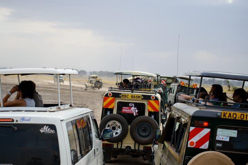 Embouteillage dans un safari images libres de droits