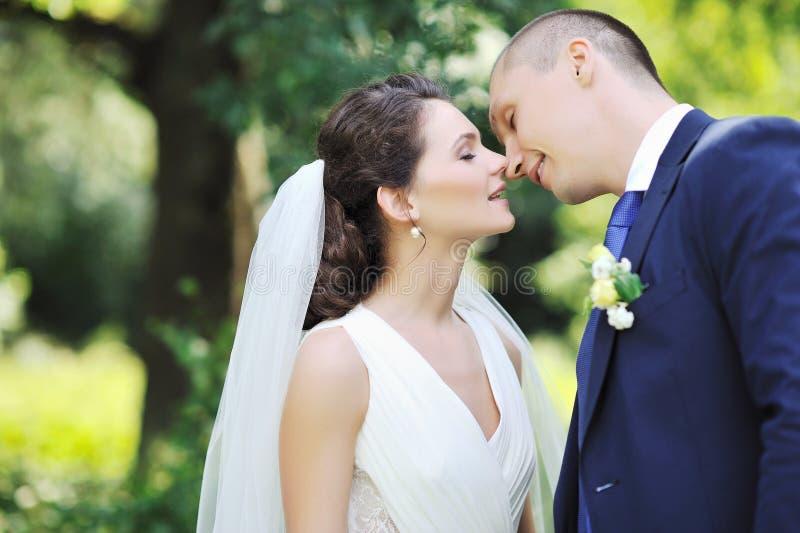 Embrassant des couples de mariage - fin  images libres de droits