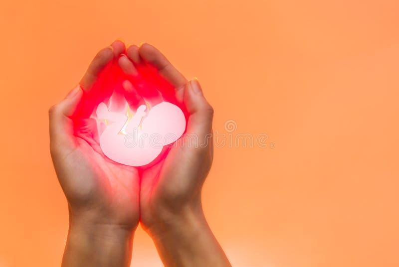 Embrione bianco da carta con resto di luce rossa in mani della donna afroamericana o asiatica Mani dalla parte di sinistra Fuoco  fotografia stock