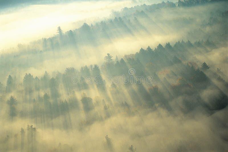 Embrumez au-dessus des montagnes vertes image libre de droits