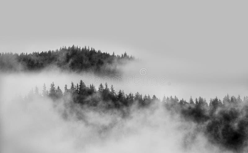Embrumez au-dessus du dessus de montagne avec la brume et des arbres en noir et blanc image stock