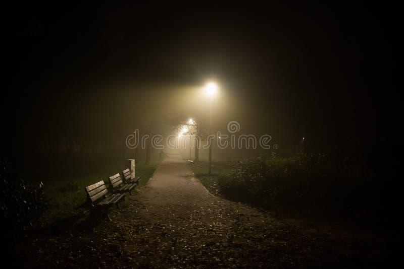 Embrumez en parc, nuit, le foyer mou, OIN élevée, photos stock