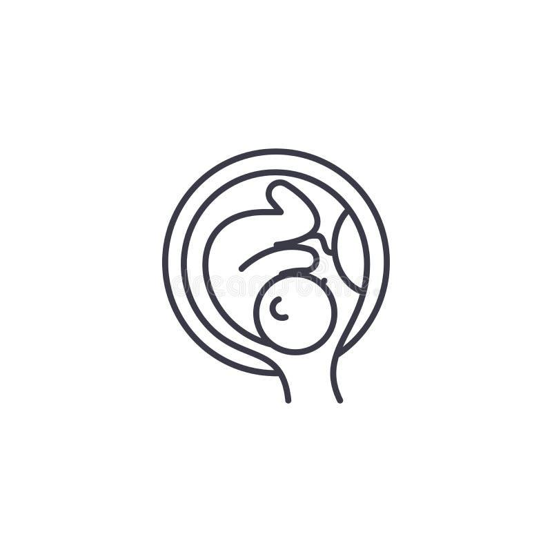 Embryo in het concept van het uterus lineaire pictogram Embryo in het vectorteken van de uteruslijn, symbool, illustratie royalty-vrije illustratie