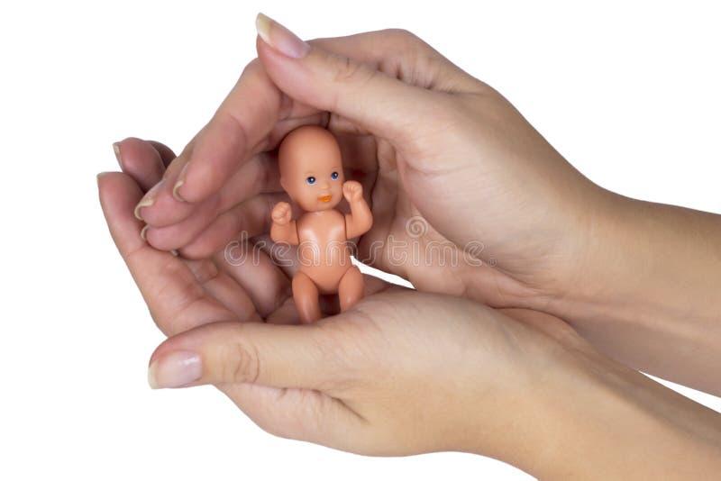 Embryo in vrouwenhand op wit wordt geïsoleerd dat royalty-vrije stock foto