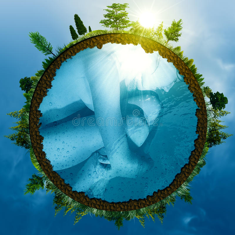 EmbryoEarth stockbild