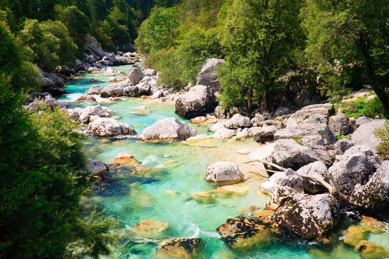 Emerald coloured alpine river Soca royalty free stock images