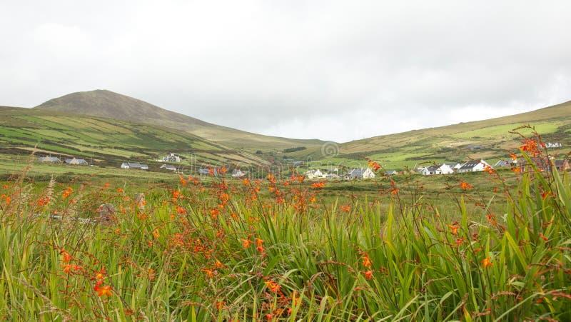Download Emerald Isle-Ireland stock photo. Image of outdoor, green - 27474804