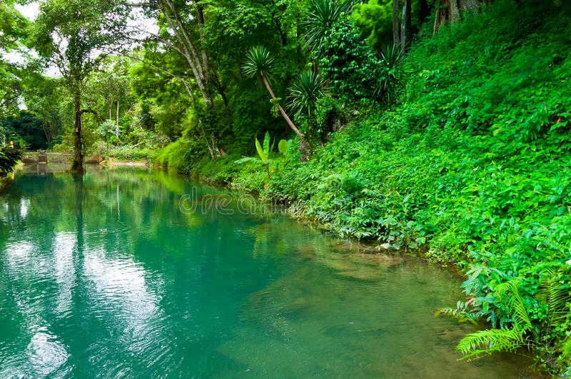 Emerald lagoon in a wild scenic forest.amazing full color lake royalty free stock image