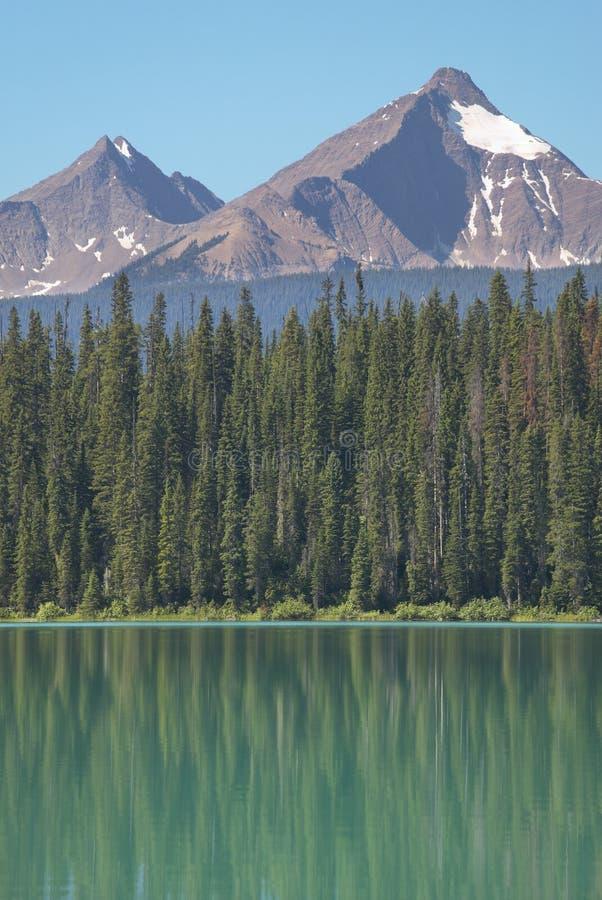 Emerald lake landscape. British Columbia. Canada stock image