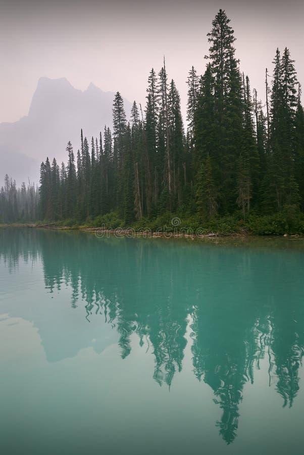 Emerald Lake, Yoho Park, Canadá fotos de stock royalty free