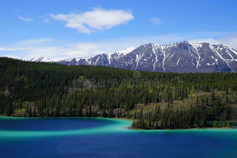Emerald Lake, Yukon, Canadá com montanhas e floresta no fundo imagem de stock royalty free
