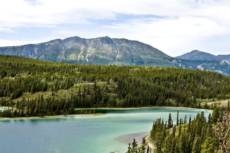 Emerald Lake In Yukon i Kanada royaltyfri foto