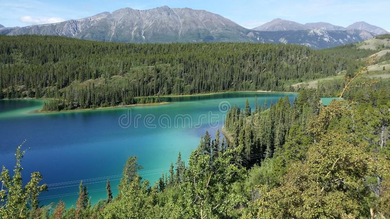 Emerald Lake Yukon Territory Canada royaltyfri foto