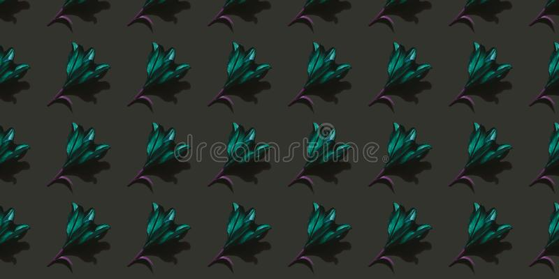 Emerald lily on dark background. Emerald lilies on dark background trend flat lay concept with fashionable toning. Many flowers pattern royalty free stock image
