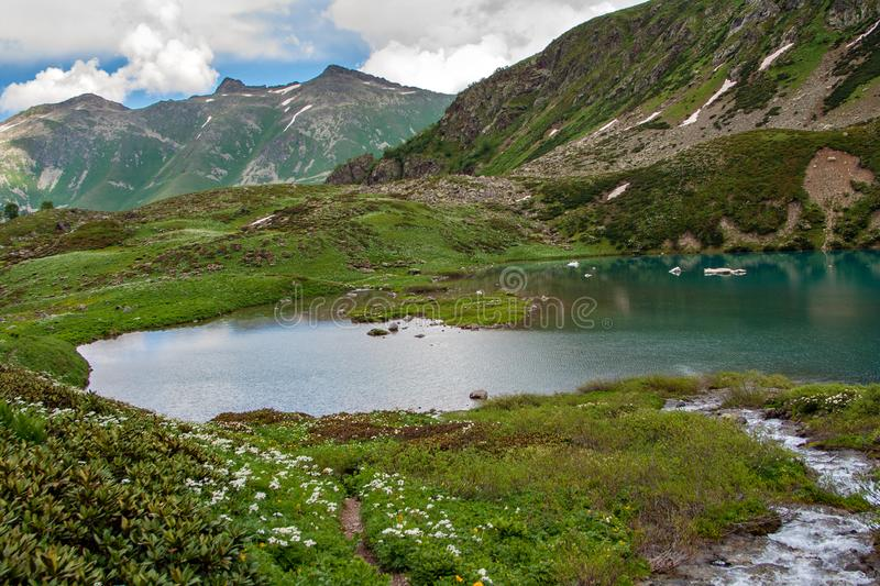 Emerald mountain lake surrounded by green grass and flowers. In the background, there are mountain peaks and a blue sky with clouds. In the foreground is a royalty free stock image
