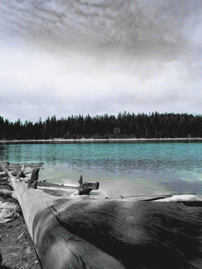 Emerald Pool ocultado imagen de archivo