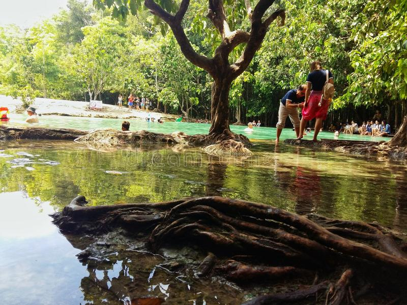 Emerald Pool Sra Morakot Krabi images libres de droits