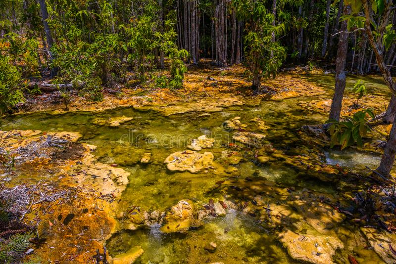 Emerald Pool, Yosemite National Park, Krabi, Thailand, Dried riv royalty free stock photo