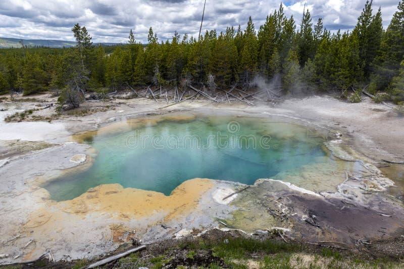 Emerald Spring op de hete vulkanische pool in het Yellowstone National Park royalty-vrije stock foto
