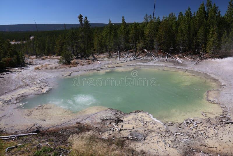 Emerald Springs Norris Geyser Basin Yellowstone parkerar royaltyfria foton