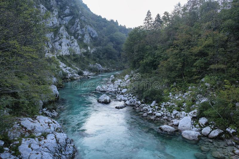 Emerald turquoise transparent water of Soca river, in Soca Valley, Slovenia stock photo