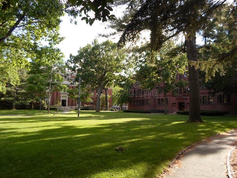 Emerson Hall and Sever Hall, Harvard Yard, Harvard University, Cambridge, Massachusetts, USA. Emerson Hall left and Sever Hall right inside Harvard Yard at stock image