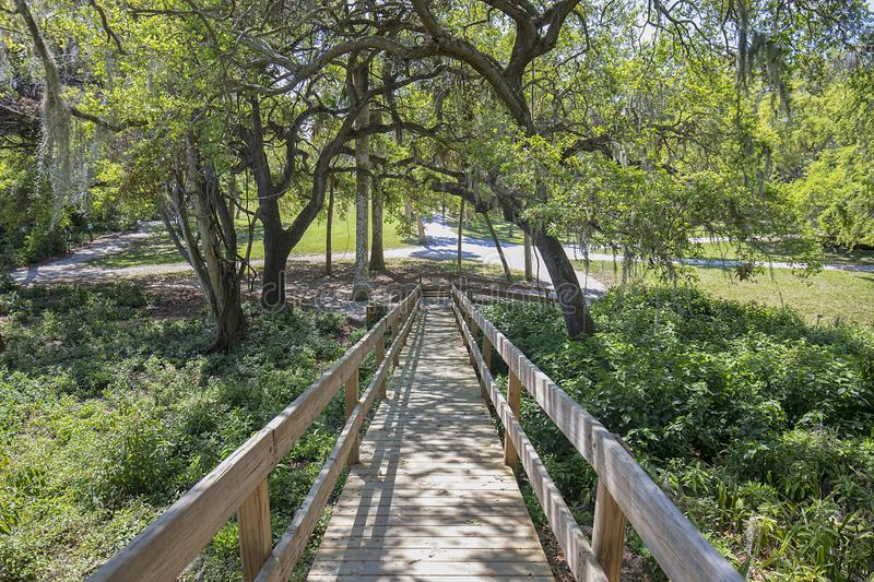 Emerson Point Preserve in Palmetto. Florida with a down ramp from an Indian mound in the foreground royalty free stock photos