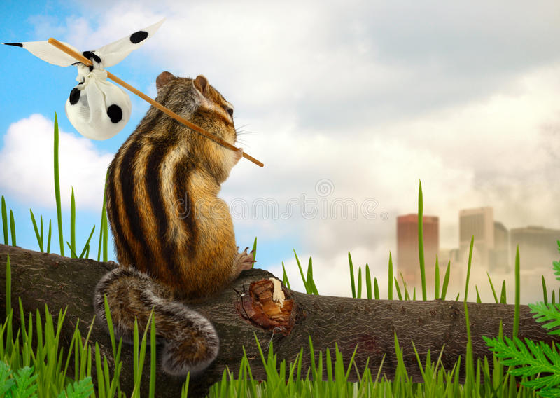 Emigrante do Chipmunk, conceito da ecologia foto de stock