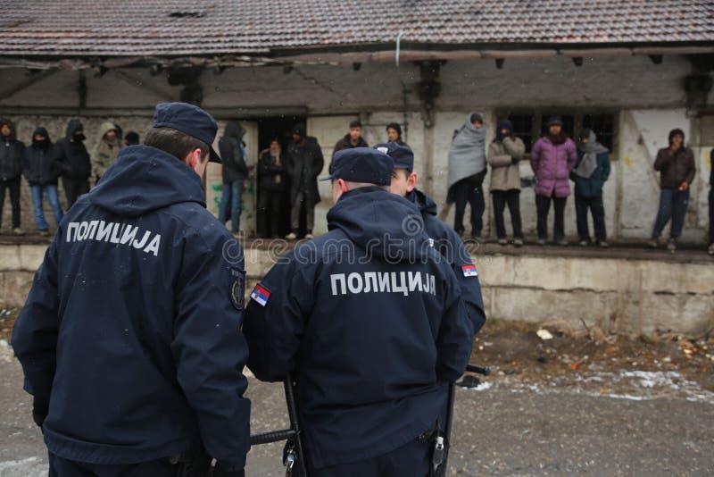 Emigrantes colados na Sérvia para a UE fotografia de stock