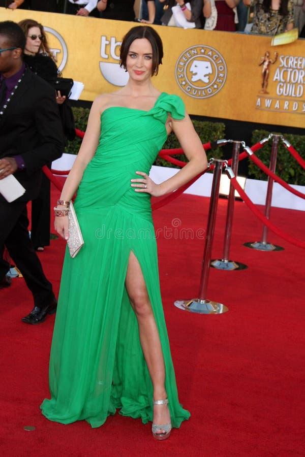 Emily Blunt royalty-vrije stock fotografie