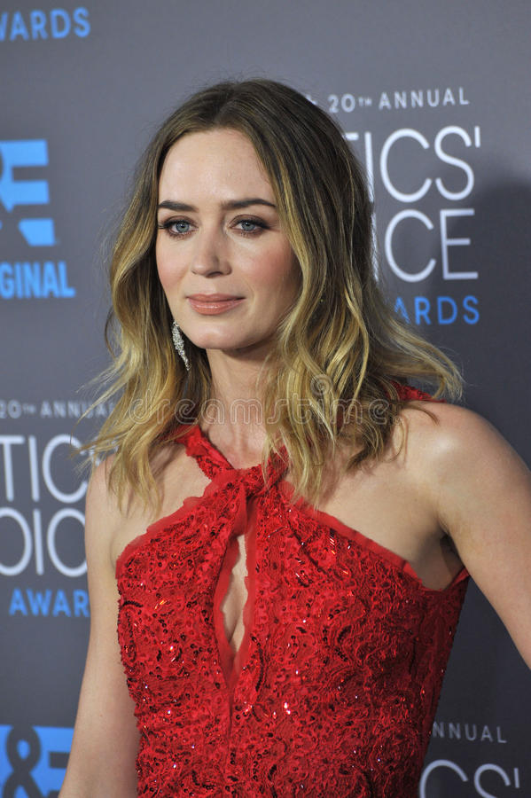 Free Emily Blunt Royalty Free Stock Photo - 49939855