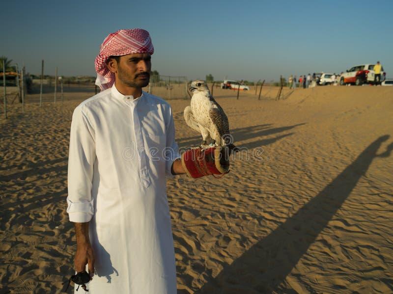 Emiratos Árabes Unidos, Dubai, deserto, falcoeiro foto de stock