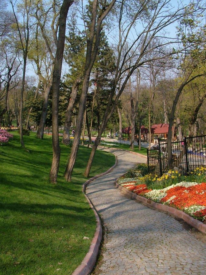 Emirgan市公园& x28; Istanbul& x29; 图库摄影