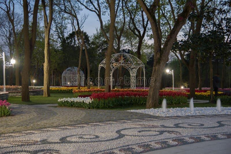 Emirgan Park, Istanbul, Turkey at night royalty free stock photos