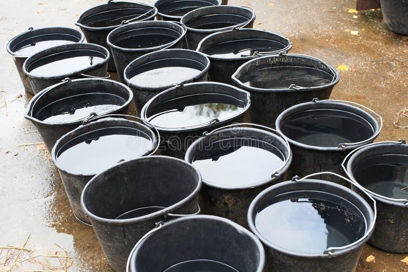 Emmers water voor het drinken paarden stock afbeelding