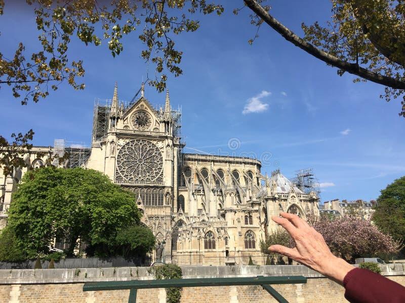 Emoções com Notre Dame De Paris após o acidente de fogo foto de stock royalty free