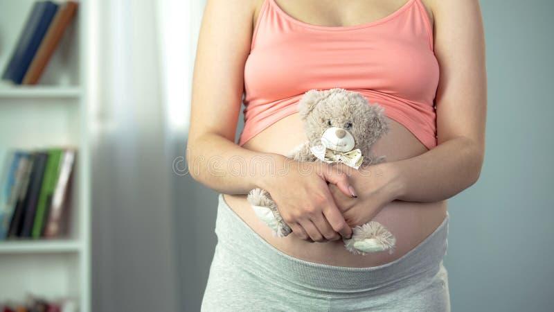 Emoções macias da mulher gravida que abraçam o urso de peluche macio, antecipação do bebê fotografia de stock royalty free