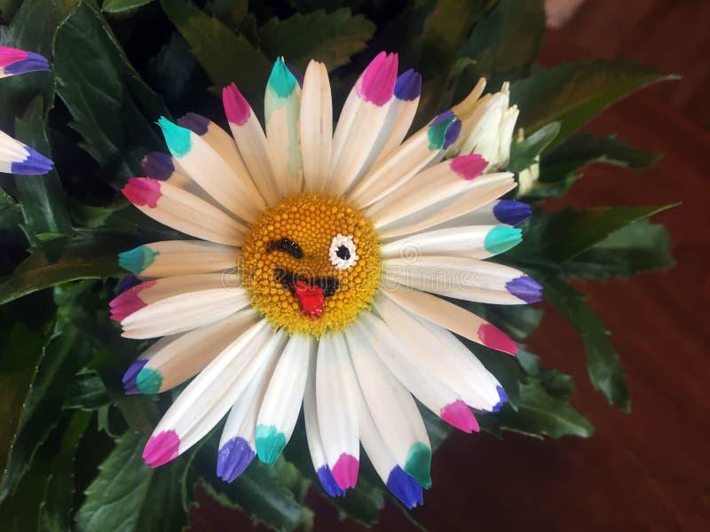 Emoji della margherita fotografia stock libera da diritti