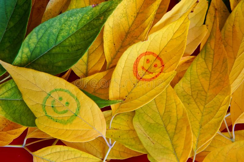 Emoticons on yellow autumn leaves. Autumn mood royalty free stock photography