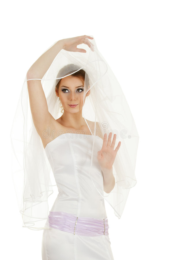 Download Emotional bride stock photo. Image of young, veil, fiancee - 8763974