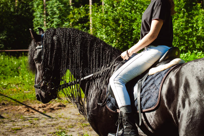 Emotional Portrait of a female in love with horses, black Friesian stallion thoroughbred pet. Emotional portrait of a horsewoman rider woman, astride, in love stock photo