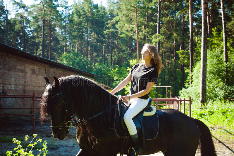 Emotional Portrait of a female in love with horses, black Friesian stallion thoroughbred pet. Emotional portrait of a horsewoman rider woman, astride, in love royalty free stock image