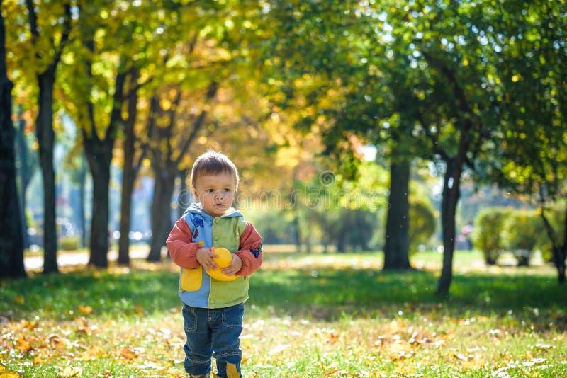Emotioneel portret van gelukkig en vrolijk weinig jongen het lachen de gele vliegende esdoorn gaat terwijl het lopen in het de he stock foto