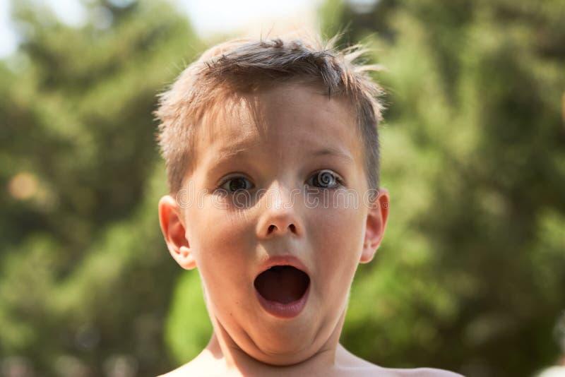 Emotioneel weinig jongensportret in het park royalty-vrije stock fotografie