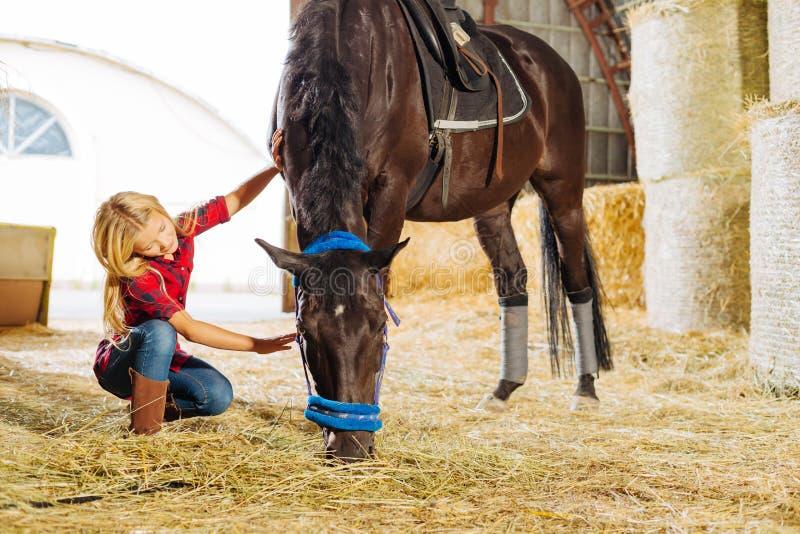 Emotionell cowboyflicka som daltar den härliga mörka hästen royaltyfria foton